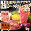 バーベキュー 焼肉 牛肉 BBQ 肉 食材 焼肉 メガ盛 飛騨牛 ハーフハーフ 送料無料 飛騨牛かたロース肉500g&もも・かた焼肉用500g