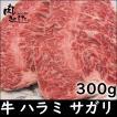 牛肉 ハラミ(サガリ) 300g BBQ バーベキュー 焼肉