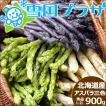 【2022年/予約】母の日 プレゼント 北海道産 アスパラ3色セット 900g(JA共撰/L-2Lサイズ)  アスパラガス ギフト 贈り物 北海道 グルメ 野菜 お取り寄せ