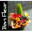 お祝い 開店祝い プレゼント 花 人気ランキング上位 おまかせプランツバスケット4 花 プレゼントなどに 条件付き送料無料 母の日