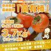 ≪送料無料≫ 奈良県西吉野産 農家直売&直送の富有柿「ご家庭用」3.7Kg(12〜14個入り)サイズ不揃・傷ありですがお得です!