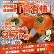 ≪送料無料≫ 奈良県西吉野産 農家直売の富有柿  贈答用(2L〜3L) 3.7Kg (11〜12個入り)