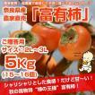 ≪送料無料≫ 奈良県西吉野産 農家直売の富有柿 贈答用(2L〜3L) 5Kg (15〜16個入り)