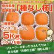 ≪送料無料≫ 奈良県西吉野産 農家直売 まったりたねなし柿 ご贈答用(2L〜3L) 5Kg (16〜18個入り)
