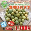 北海道産 冷凍 フルーツほおずき 500g/無農薬栽培 食用ほおずきは、ほおずきジャムやスムージーなどの加工にオススメ!