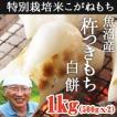 【完売】魚沼産杵つきもち 白餅1kg(500gx2)