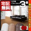 カーペット 3畳  防炎 防ダニ 床暖対応 日本製 長方形 厚手 絨毯 江戸間 三畳 おしゃれ 安い スチームファー