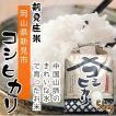 新見庄米 コシヒカリ 5kg