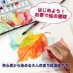塗り絵の通信講座【3ヶ月お試し】水彩コース ハガキ月2作品