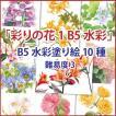 「彩りの花1」B5水彩 10種セット
