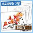 【大人の塗り絵 水彩 お花・植物画】赤いアルストロメリア