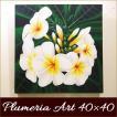 バリ絵画 プルメリア 40×40 アジアン インテリアアート プルメリア  リゾート 南国