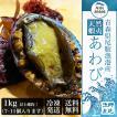 天然 蝦夷アワビ 1kg 冷凍 送料無料 青森産 エゾアワビ お刺身用 贈り物 お歳暮 あわび 鮑 正月 高級食材 ギフト 熨斗対応