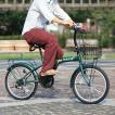 HANWA(阪和) 20インチ カラフル折りたたみ自転車 6段変速 カゴ/カギ/ライト付 TRAILER(トレイラー) BGC-F20-GR グリーン