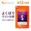 【1年分】ウコン ガジュツ 紫うこん ダイエットサポート サプリ 健康食品 サプリメント 約12ヶ月分 _JD