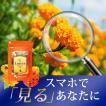 【1年分】ルテイン 健康食品 サプリメント 約12ヶ月分 _JH