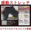 ディッキーズ 感動ストレッチ パンツ ストレート メンズ レディース DICKIES スラックス M〜5L 大きいサイズ対応