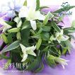 花 ギフト 誕生日 白いユリの花束25輪 結婚記念日 花 お祝いプレゼント 百合 カサブランカ 以外 ゆり 切り花
