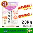 新米 2年産 米 お米 小分け 20kg 白米 精米 安い 美味い ブランド米 天女の泉 福島県産 送料無料 天女の泉20kg