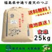 新米 米 お米 玄米 天のつぶ 安い 美味い 25kg 令和元年産 1年産 ブランド米  福島県 送料無料 一部地域を除く 福島県中通り産天のつぶ25kg 玄米