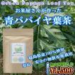 青パパイヤ葉茶 2g×20袋入り 美容 健康 酵素 スリム  送料無料