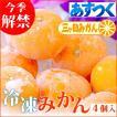 冷凍みかん 冷凍フルーツ 三ヶ日みかん 静岡産 ミカン フルーツ シャーベット  4個