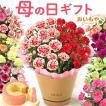 母の日 ギフト 花 母の日 プレゼント カーネーション 鉢植え 花鉢 花とスイーツ 2020 ギフトランキング お菓子