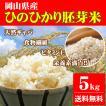 新米 お米 5kg ひのひかり胚芽米 令和元年岡山県産 送料無料