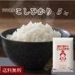 新米 お米 5kg 高知県産コシヒカリ 令和元年産 送料無料