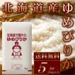 新米 お米 5kg ゆめぴりか 令和元年産 北海道産 送料無料