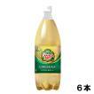 カナダドライ ジンジャーエール 1.5l 6本 (6本×1ケース) PET 炭酸飲料 お徳用  安心のメーカー直送