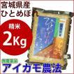 精米 自然栽培米 2kg 宮城県産ひとめぼれ アイガモ農法