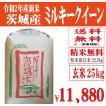 29年産新米 玄米30kg 送料無料 茨城ミルキークイーン