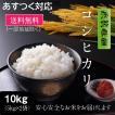 送料無料!茨城県産コシヒカリ10kg