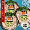 おもてなしギフト うなぎの刺身 浜松の魚料理専門店 魚魚一が生み出した浜松の新しい名物 浜名湖うなぎの刺身 贅沢3皿セット 風呂敷(遠州綿紬)付