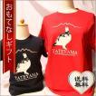 おもてなしギフト Tシャツ 立山の玄関 富山県魚津から届ける親子アルピニストのための雷鳥お揃いぺアTシャツ