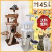 キャットタワー 据え置き型 QQ80349-R 【据え置き ボックス付 おしゃれ 省スペース スリムタイプ シンプル 猫用品 キャット ネコ キャットツリー 爪と