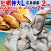 海鮮 グルメ牡蠣 かき 広島県産 (特産品 名物商品) 広島 カキ 2kg(1kg(正味850g)×2袋) 広島産 送料無料