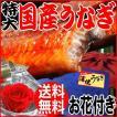 ギフト うなぎ 国産 蒲焼き 鰻 送料無料 お花付き 国産うなぎ蒲焼き1尾 特大(約230〜250g前後×1尾)