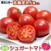 シュガートマト(約700g)高知県日高村産 フルーツトマト 送料無料