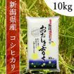 産地直送 新潟県産 令和2年産 おおしま育ち コシヒカリ 10kg 白米