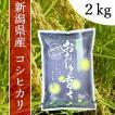 産地直送 新潟県産 令和2年産 おおしま育ち コシヒカリ 2.0kg 白米