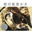 能登かき 殻付牡蠣  20個  (約2kg)(牡蠣ナイフ、片手用軍手付)