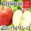 【条件付き送料無料】東北産 訳ありリンゴ(約10kg/目...