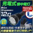防災用 LED懐中電灯セット(充電池付)特別価格!