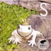 キシマ フロッグ ガーデンオーナメント  動物 S KH-60947 王冠 王子様 童話 カエル かえる 金運アップ  アンティーク