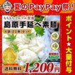 送料無料  長崎 島原伝統 手延べ素麺(そうめん)20束(...