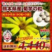 菊芋 糖尿予防 熊本県産菊芋使用 菊芋の粒(90粒×3袋)約3ヶ月分 いまテレビで話題 イヌリンパワー お取り寄せ  送料無料