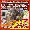 濃厚な旨みと豊かな香り 熊本県 人吉産 きくらげ(20g)×1袋 スライスタイプ 国産 キクラゲ 九州 木耳  お試し きくらげ 希少 わけあり 得トクセール