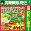 【限定セール】訳あり →899円クーポン利用で 沖縄シ...